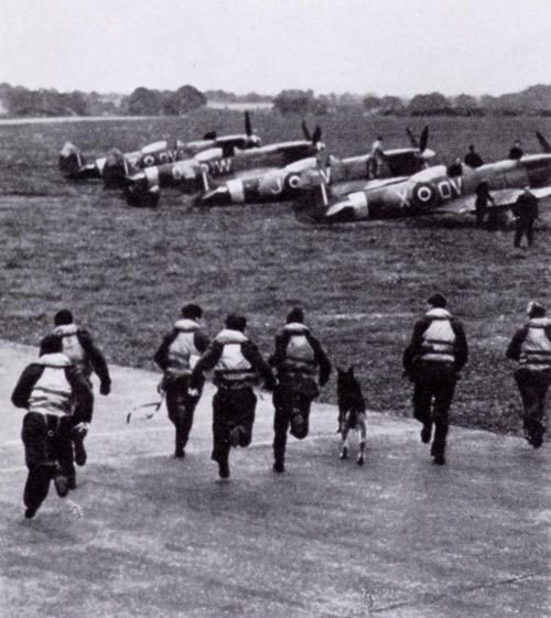 Pilots of the Royal Air Force scramble to their aircraft in order to intercept German bomber formations during the Battle of Britain, England - Summer 1940.