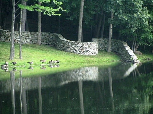 Goldsworthy wall at water's edge and wrapping round trees, cast-iron ducks optional.