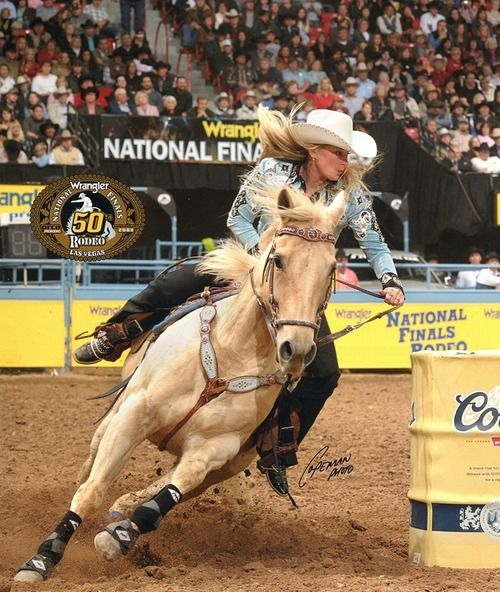 One day, I will own my palomino and we will barrel race.