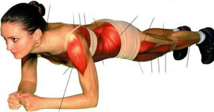 Questo è uno degli esercizi più importanti per rafforzare e migliorare la parte centrale del corpo, in particolare l'addome. Con il plank infattisi scioglie il grasso addominale, si rinforzanoi muscoli anteriori e posterioridella schiena,la parte superiore del corpo, i glutei, le gambe e le mani