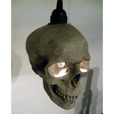 1000 ideas about Skull Furniture on Pinterest