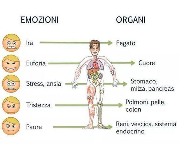 L'energia delle emozioni decide la salute degli organi. Ecco come comprenderle