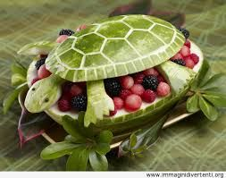 anguria tartaruga - Cerca con Google