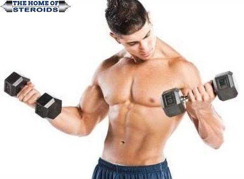 Whey protein help burn fat