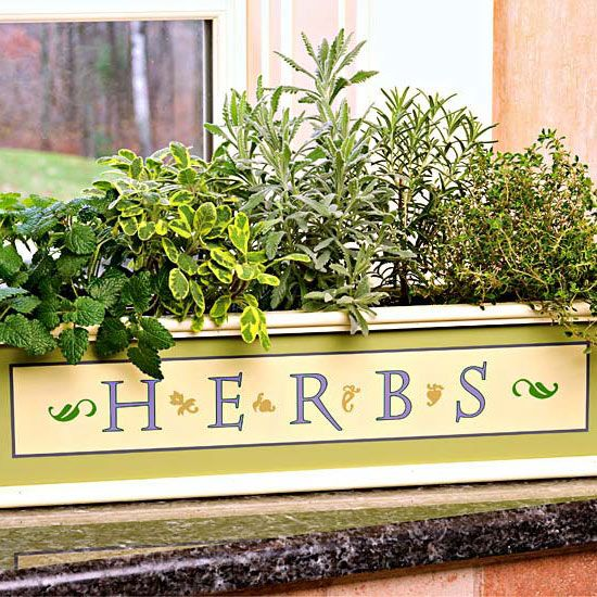 Great budget friendly gifts for gardeners Kitchen windowsill herb pots