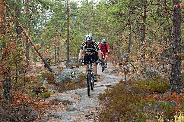 Maastopyöräily tulossa kansallispuistoon   Suomen Luonto