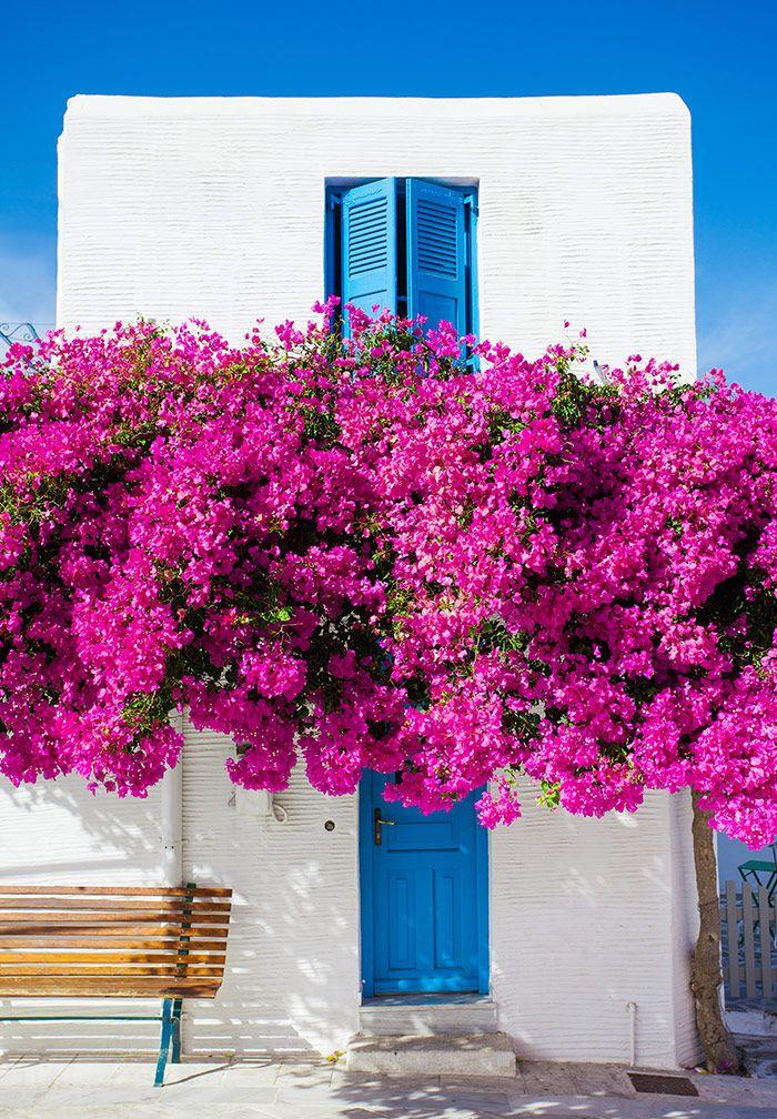 Κυκλαδίτικη αρχιτεκτονική και διακόσμηση  #diakosmisi #minimal #αρχιτεκτονική #διακόσμηση #ελλαδα #ελληνικηαρχιτεκτονικη #έμπνευση #καλοκαιρι #κυκλαδες #λευκό #νησια #σπιτι #φώς