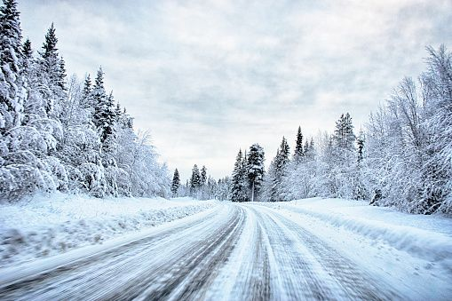 View of snow covered forest highway, Hemavan, Sweden