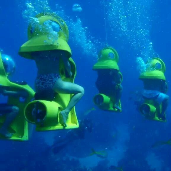 Beautiful Places Underwater: 17 Best Images About For The Thrill Of It All On Pinterest