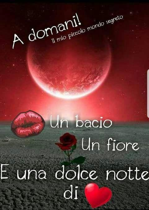 Un bacio un fiore e una dolce notte di cuore!