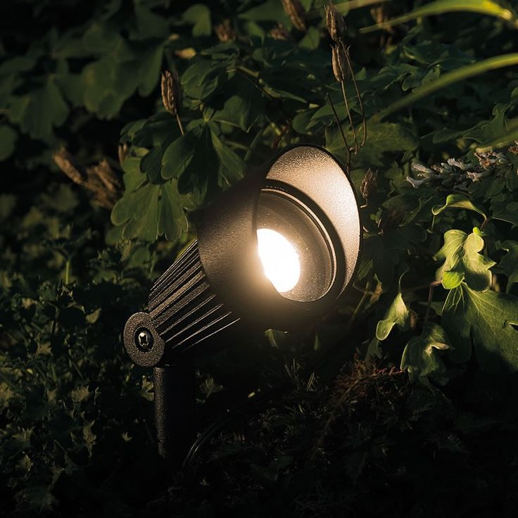 The Focus spotlight is the most popular light in the whole of the Techmar range. The Focus is a great ground spotlight, perfect for lighting planting in borders. While small, the higher wattage lamps (bulbs) have enough power to light, larger bushes, trees and garden features.