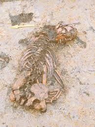 Afbeeldingsresultaat voor prehistorische opgravingen nederland