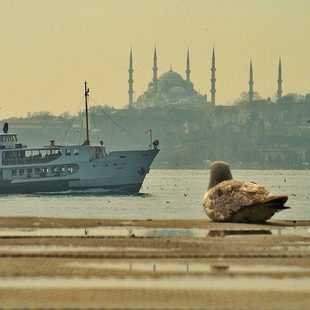 İstanbul By zuuhall