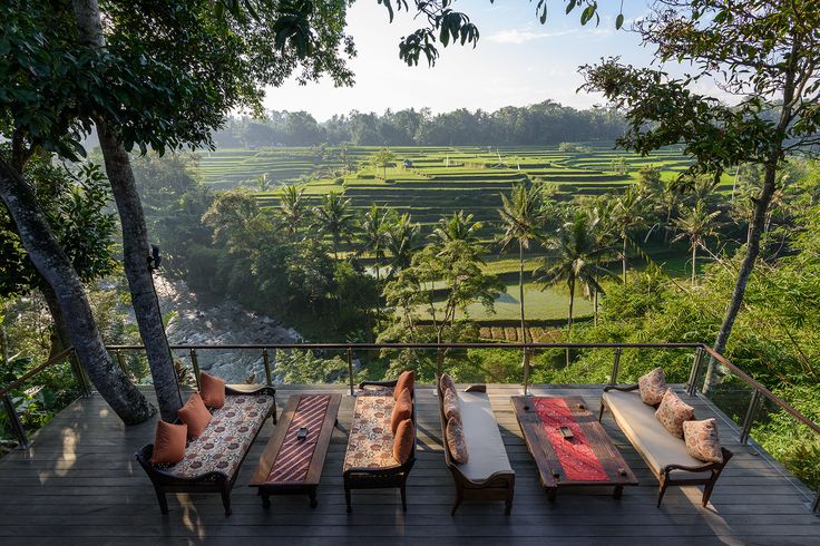 rice terrace view from our deck at Permata Ayung Private Estate, Ubud Bali
