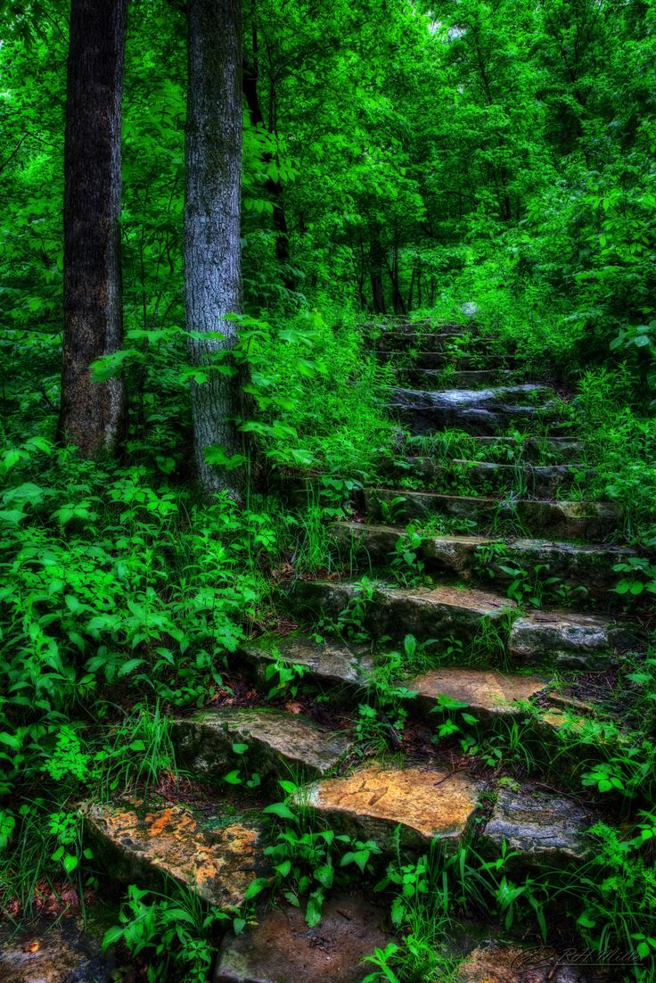 Ledges State Park in Iowa   Intrepid by RH Miller on 500px