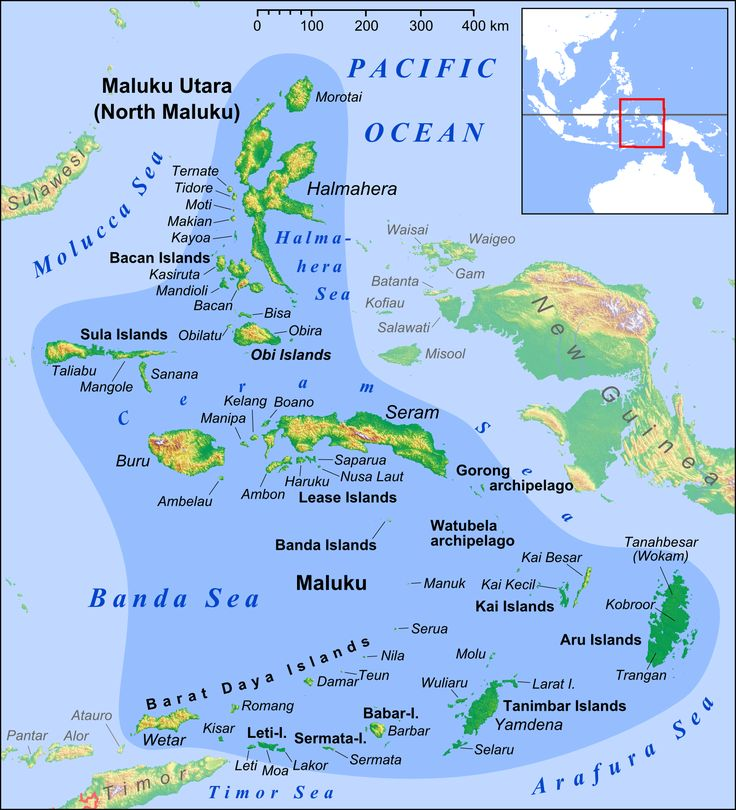 45 best maps images on pinterest maps cards and history maluku islands en ceram sea wikipedia the free encyclopedia ccuart Images
