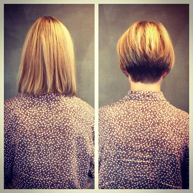 the wedge haircut photos 79 best best bob cuts images on bobs bob hair 6227