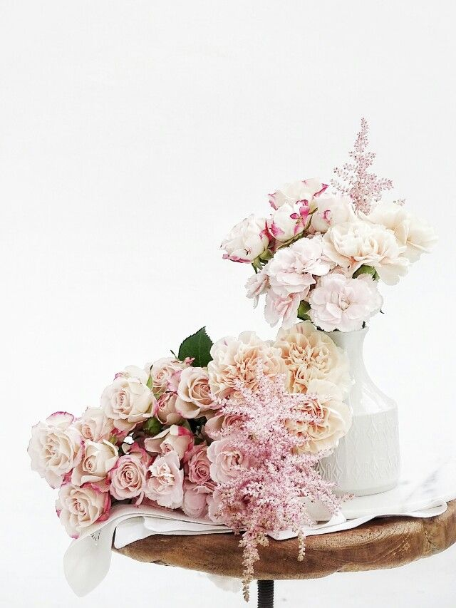 best 25 nelken blumen ideas on pinterest nelken rosa nelken and ostern englisch. Black Bedroom Furniture Sets. Home Design Ideas