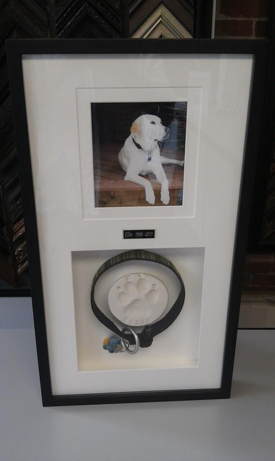 Custom framing is a fantastic way to honor your lost loved ones, even those furry friends... This beautiful shadowbox is a wonderful tribute to one of these very special pets, it includes a photo, dog collar and sweet paw imprint. What a sentimental and memorable gift this would make!