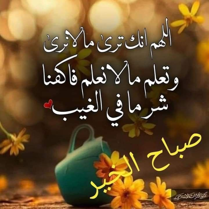 Pin By Samt On صباحو In 2021 Good Morning Flowers Good Morning Messages Morning Messages