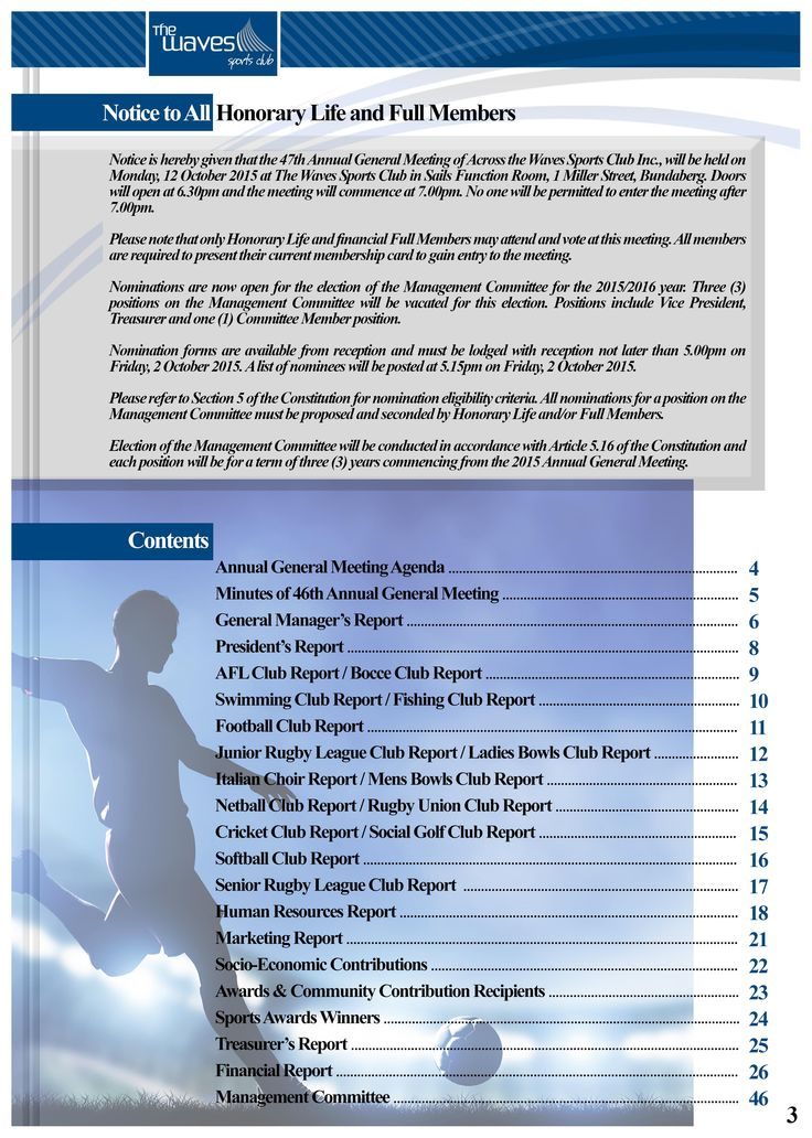 Annual Report Page 3 (Contents Page). Would you like a design like this for your business? Email: art3sian@gmail.com