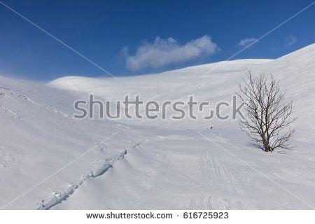 Lapland, Finland. Pallastunturi