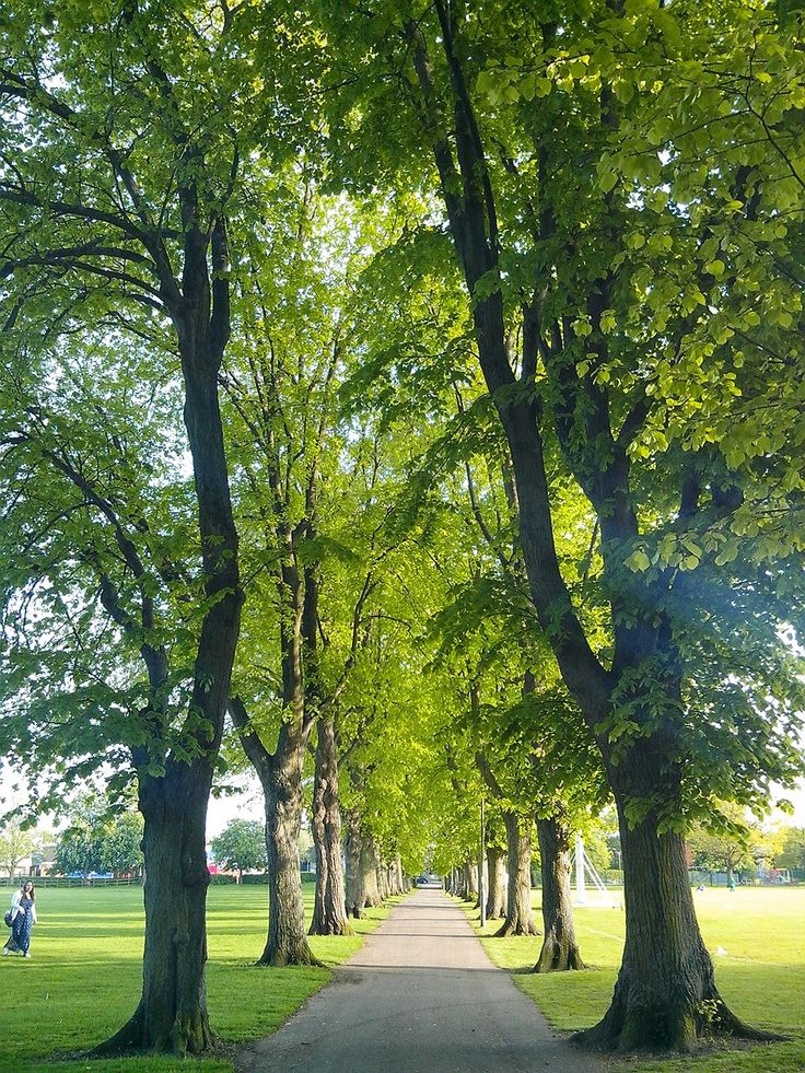 Witney, Oxfordshire. Cotswolds. Photo by Anna Gomis. La viajera: Un día en Witney, Oxfordshire
