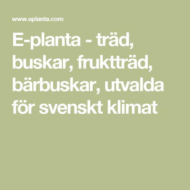 E-planta - träd, buskar, fruktträd, bärbuskar, utvalda för svenskt klimat