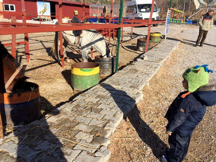 Haftanın Bir Günü At Çiftliğindeyiz – Renkli Orman Erken Çocukluk Merkezi