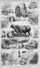 LIVESTOCK MODEL DAIRY FARMS COWS DAIRY PRODUCTS NEW JERSEY CATTLE FARM LIFE