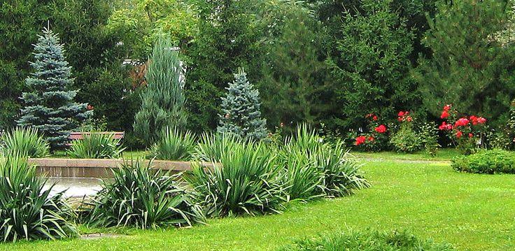 Romanian Academy Gardens #photography