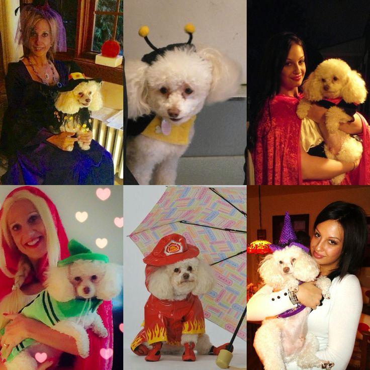 Boby's Halloween costumes