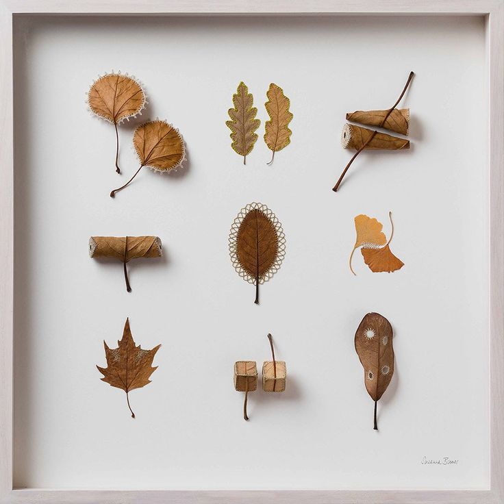 Artist Susanna Bauer adds thread and crochet to dried leaves, creating miniature artworks #womensart