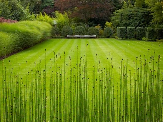 29 Best Images About #Garden Design Online Course - Tutor John