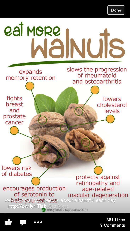 Eat them up  Walnuts