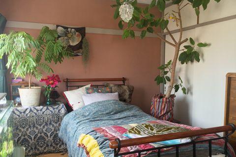 【お部屋特集】植物で満たされた開放感溢れる部屋 第一回|H.P.FRANCE/BLOG/H.P.DECO