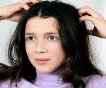 Most Effective and Economical Home Treatment for Lice