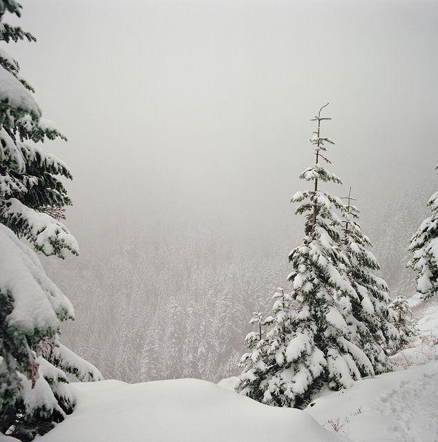 {dreams under a snow sky}