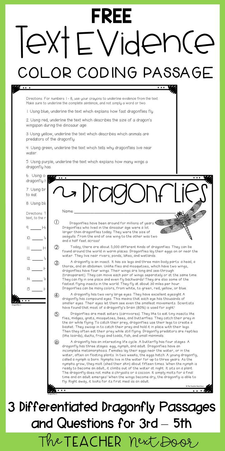 The Cowardly Lion And The Hungry Tiger Answers Cowardly Lion Text Features Worksheet How To Memorize Things