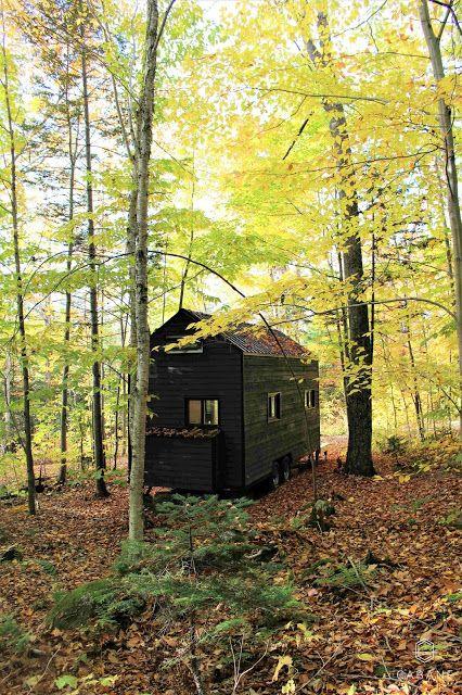 Mini maison dans la grande forêt mon rêve denfant toujours vivant
