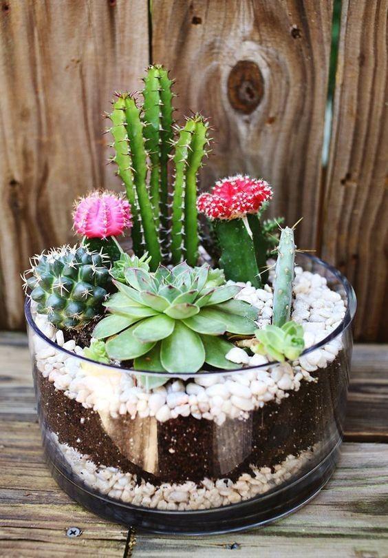 Ideas geniales y muchas imágenes para decorar con cactus y crear centros de mesa geniales.