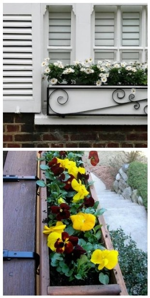 Beautiful, simple & easy. Adding a window box gives instant street appeal!   The Micro Gardener: Window Boxes