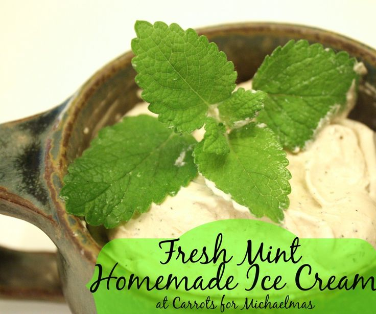 recipe: fresh mint ice cream recipe no eggs [38]