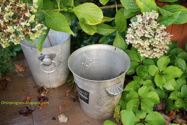 Secchielli per il ghiaccio riciclati in giardino come vasi