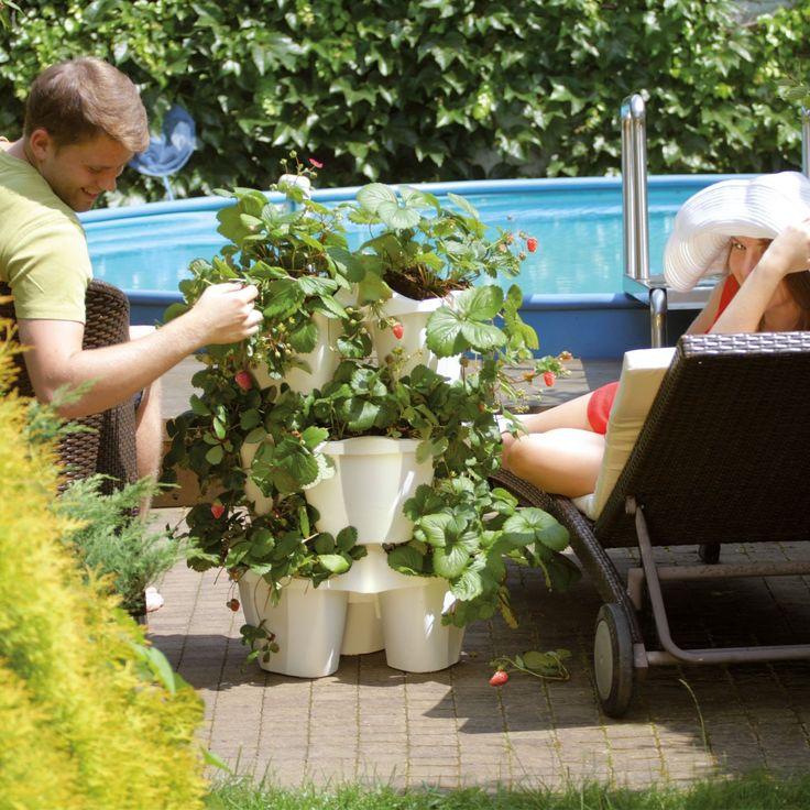 1000 id es sur le th me jardini res suspendues sur. Black Bedroom Furniture Sets. Home Design Ideas