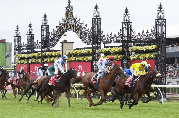 Whether you're organising an exclusive lunch for VIP clients, or a simple office party, check out our top 4 tips to ensure your office Melbourne Cup lunch is a success.