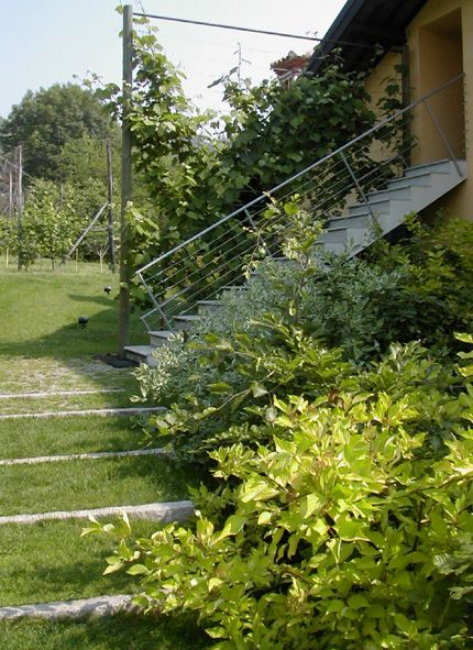 Private garden - Pinerolo (To) Italy -  Green step