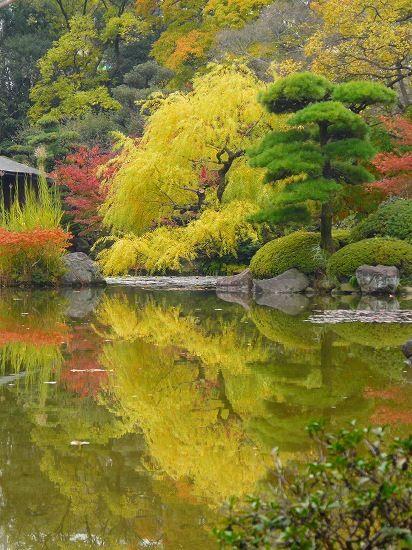 Kyoto Garden, Kyoto, Japan