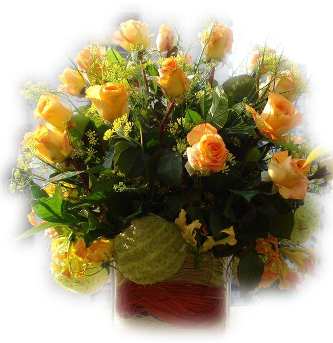 pipacsok,csodaszép png virág,