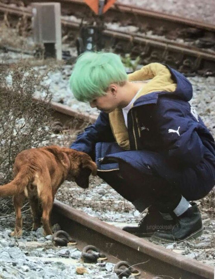 Me: ... Suga: *pets the dog, looks all cute and squishy* Me: *dies from a heart attack*